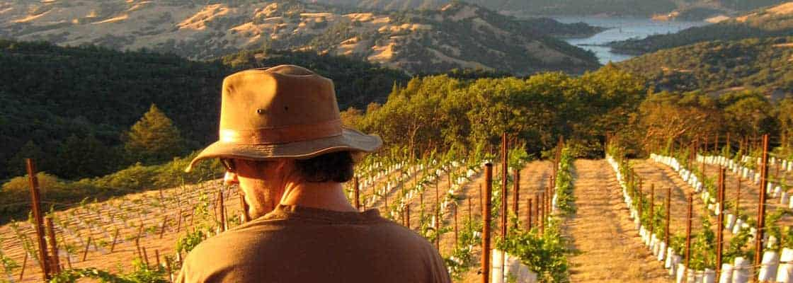 Winemaker Emmett Reed at our Picnic Ridge Block in 2009